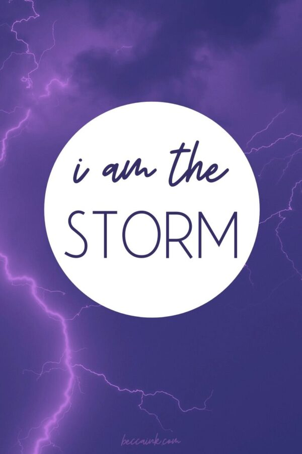I am the storm, poetry by rebecca d dillon